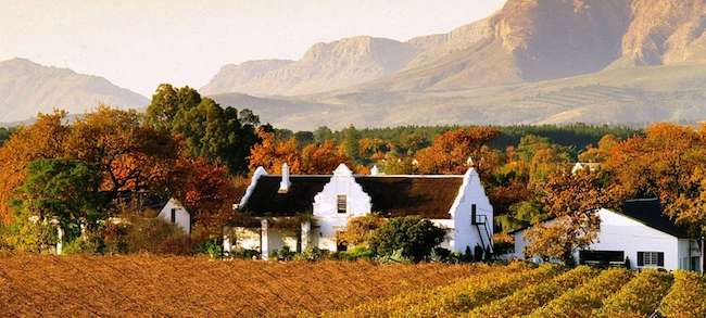 wine estate stellenbosch cape town holiday